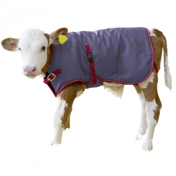 Calf Jacket Thermo Plus Breathable
