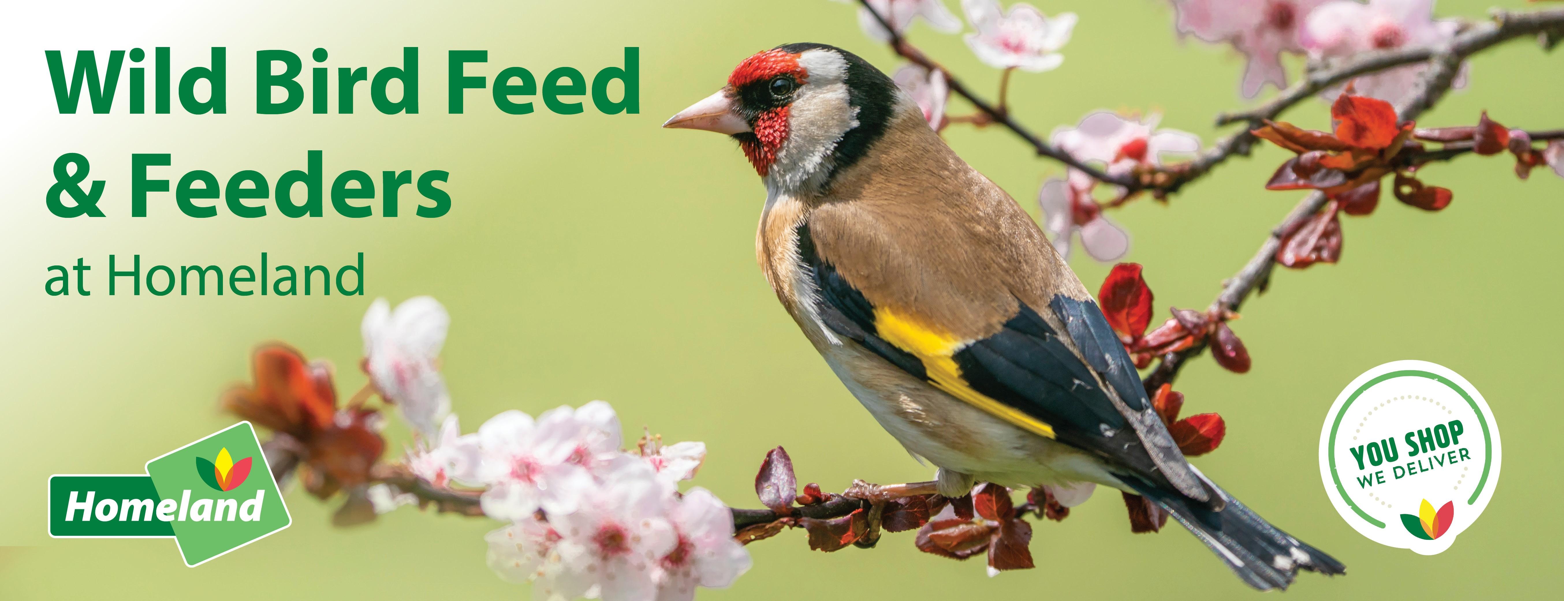 Wild-Bird-Web-banner