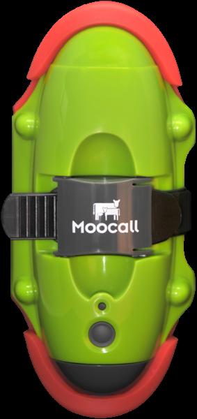 Moocall Calving Sensor