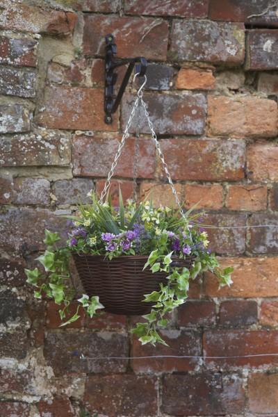 Easy Hanging Basket - Lilac