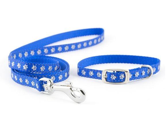 Small Bite Puppy Collar & Lead Set
