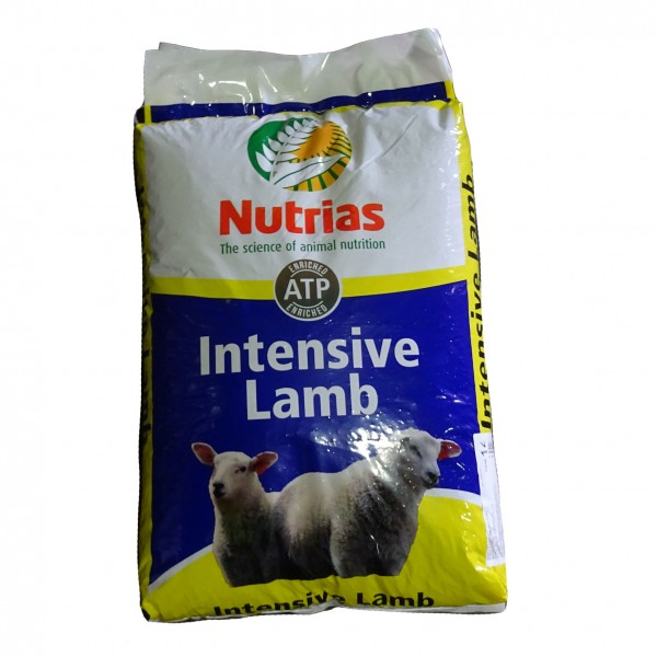 Nutrias Intensive Lamb