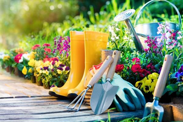 Gardening-image-2