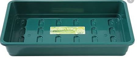 Standard Seed Tray