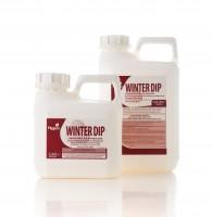 Hygeia Winter Dip