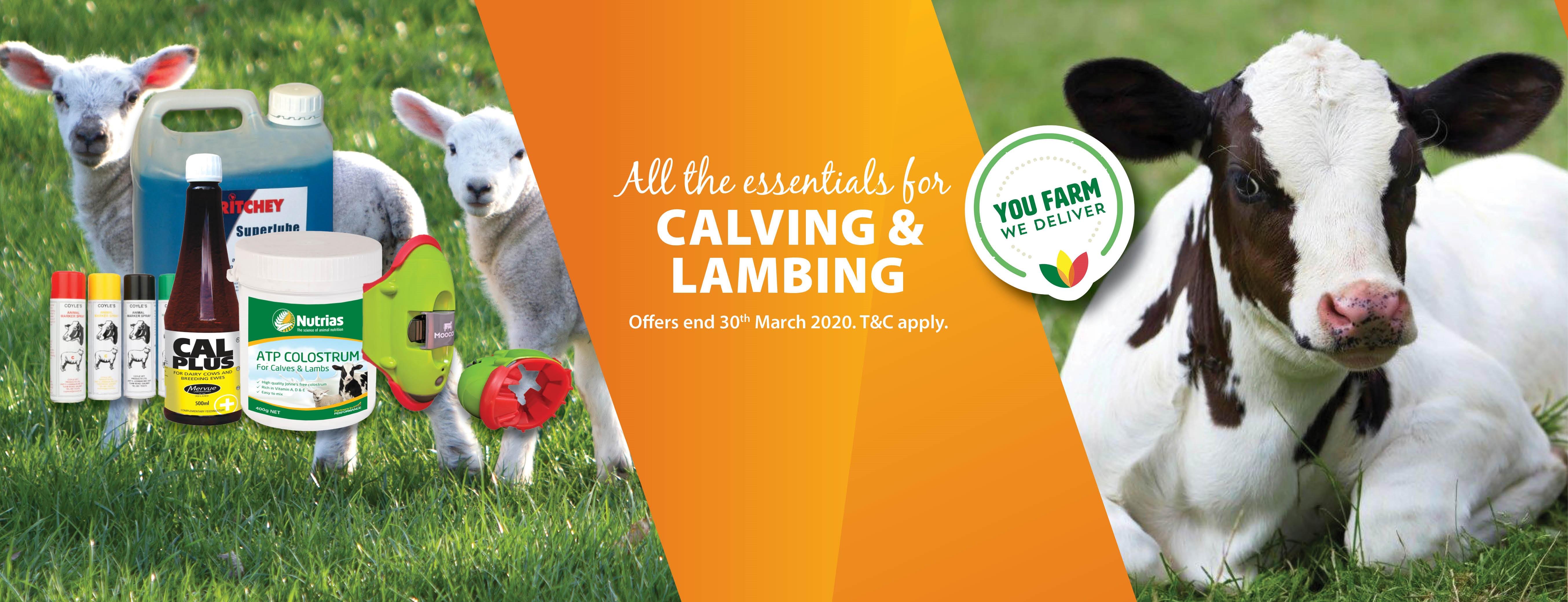 Calving-Lambing-2020
