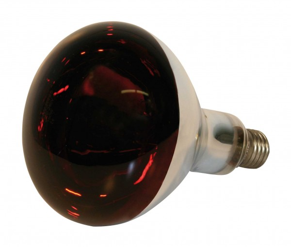 Infrared Bulb Red - 150W
