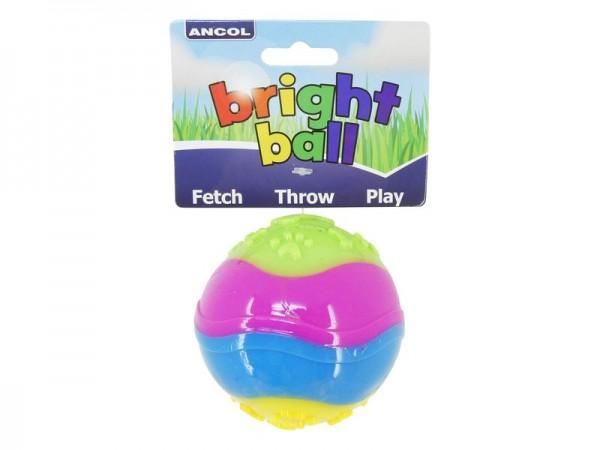 Bright Ball Dog Toy