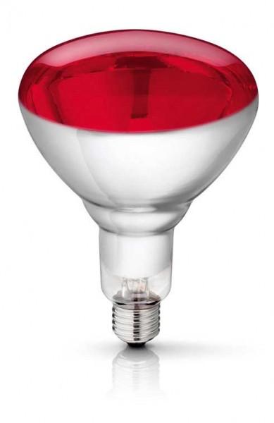 250 Watt Red Philips Infrared Bulb