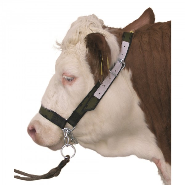 Nylon Cattle Show Halter Olive Green