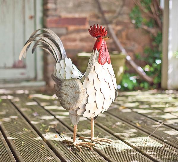 Feathered Cockerel
