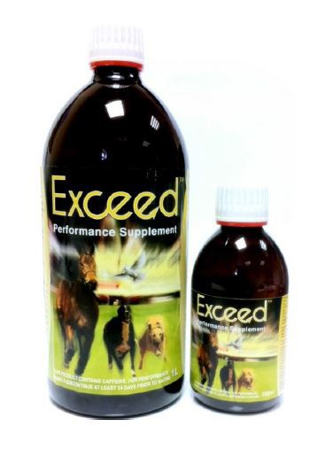 Exceed Performance Supplement