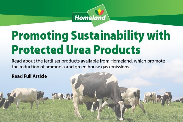 Protected-Urea-Blog-Article