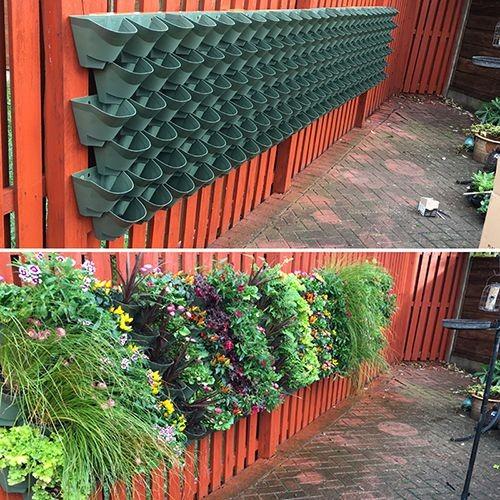 Wonderwall Wall Planter