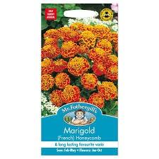 Marigold (French) Honeycomb