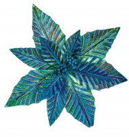 Peacock Poinsettia