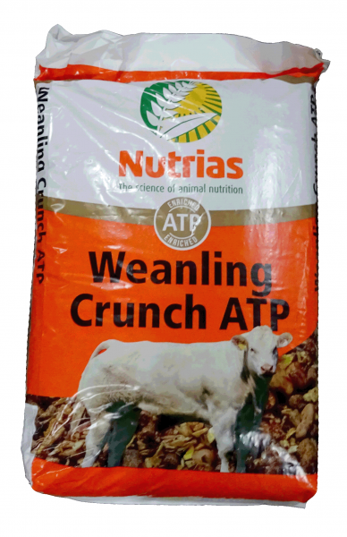 Nutrias Weanling Crunch ATP 25kg